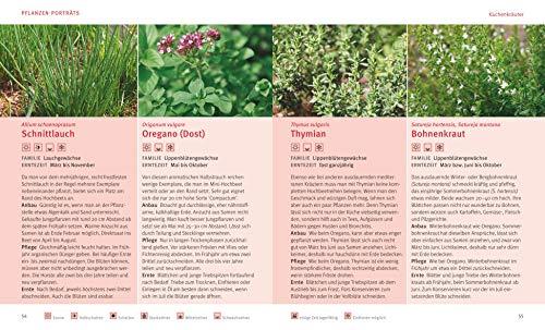 Hochbeet Buchtip | Selbstversorger | Gemüse auf dem Balkon